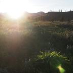 Sun Mountain 50k!